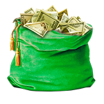 """New Year Money Bag"" from  ""FreshForex"" company!"